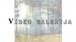 video g